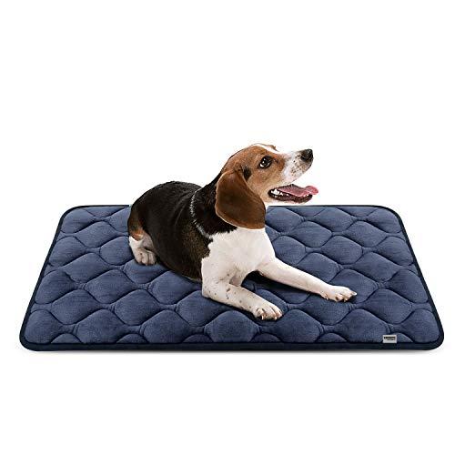 【最高の寝どころを!】犬用ベッドのおすすめ人気ランキング10選のサムネイル画像
