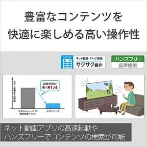 https://images-fe.ssl-images-amazon.com/images/I/51ww67WZQbL.jpg