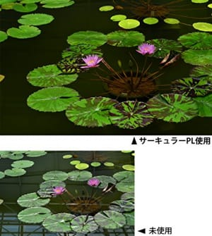https://images-fe.ssl-images-amazon.com/images/I/51GVo5TTgeL.jpg