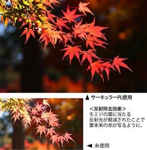 https://images-fe.ssl-images-amazon.com/images/I/61XL0sZAstL.jpg