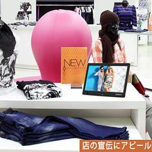https://images-fe.ssl-images-amazon.com/images/I/51NxDrgNRJL.jpg