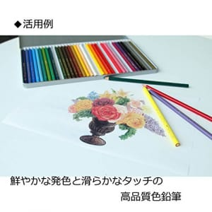 https://images-fe.ssl-images-amazon.com/images/I/51sAR2gVuaL.jpg