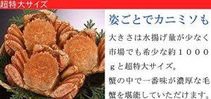 https://images-fe.ssl-images-amazon.com/images/I/619pDt4Rn0L.jpg