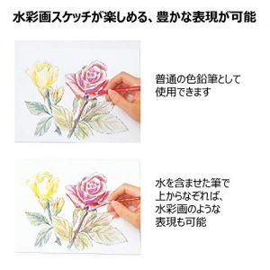 https://images-fe.ssl-images-amazon.com/images/I/51pAffdTvHL.jpg