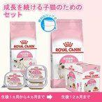 https://item-shopping.c.yimg.jp/i/g/charmco_252136