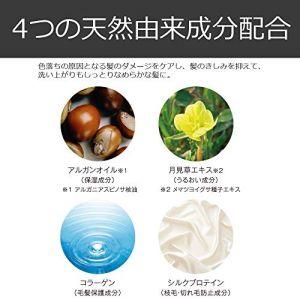 https://m.media-amazon.com/images/I/51B8095u3AL.jpg