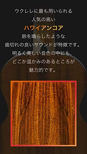 https://m.media-amazon.com/images/I/31v0NesQCTL.jpg