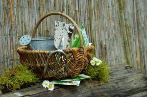 https://cdn.pixabay.com/photo/2016/03/30/15/17/garden-gardening-1290801_960_720.jpg