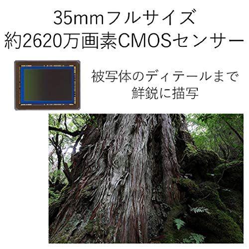 アイテムID:5284743の画像3枚目